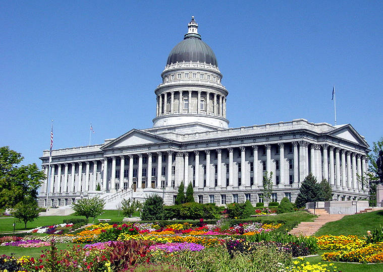 capitol with flowers.jpeg